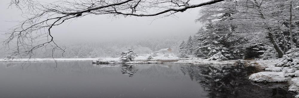 Winter_Kleiner_Arbersee.jpg